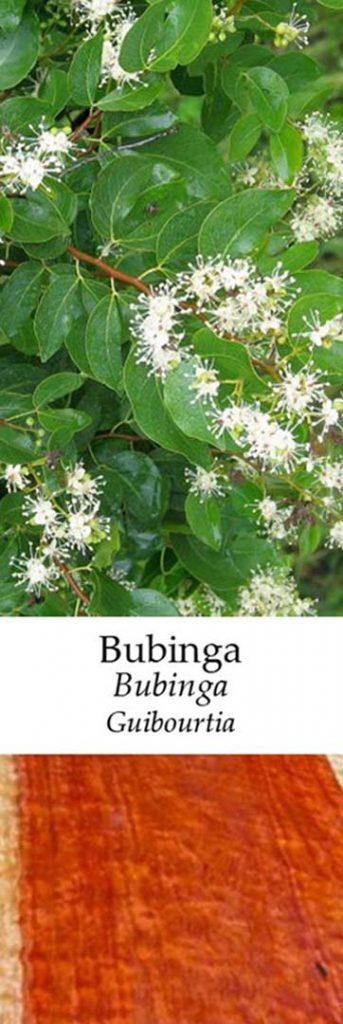 Bubinga  | Adomo medis