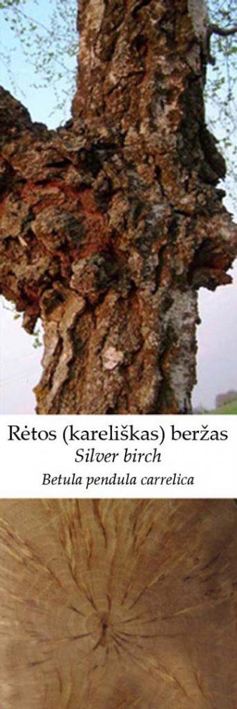 Karelijos beržas | Adomo medis