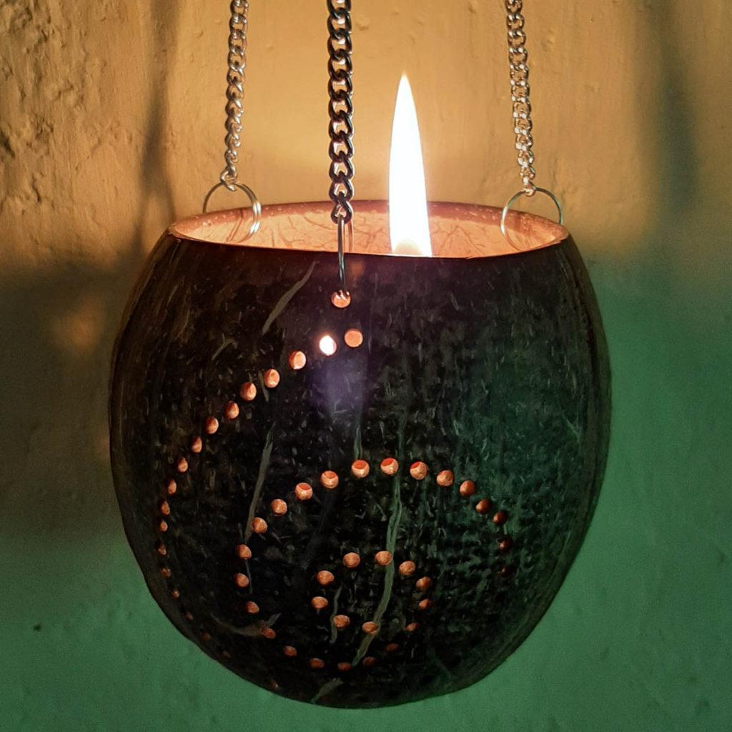 Žvakidė   Adomo medis